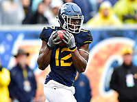 Morgantown, WV - NOV 18, 2017: West Virginia Mountaineers wide receiver Gary Jennings (12) catches a pass in open field during game between West Virginia and Texas at Mountaineer Field at Milan Puskar Stadium Morgantown, West Virginia. (Photo by Phil Peters/Media Images International)