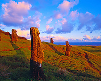 Moai Statues at Rano Raraku  Easter Island, Chile  Rapa Nui National Park  Sauth Pacific Ocean  Sunset  Quarry for famous statues  February