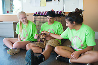 Salve Regina Freshmen Gabby Schilling, Jared Tirocchi and Leah Rainbow spend time with Pepsi, one of many animals for adoption at the Potter League For Animals, as they begin their community service project.