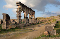 The Decumanus Maximus or Main Street, with the Portico of a large house West of the Palace of Gordian, with arches forming the facade of shops, North East quarter, Volubilis, Northern Morocco. The house is built around a small peristyle courtyard with a central pool and shops on both facades, with a secondary apartment with heated rooms to the North East. Volubilis was founded in the 3rd century BC by the Phoenicians and was a Roman settlement from the 1st century AD. Volubilis was a thriving Roman olive growing town until 280 AD and was settled until the 11th century. The buildings were largely destroyed by an earthquake in the 18th century and have since been excavated and partly restored. Volubilis was listed as a UNESCO World Heritage Site in 1997. Picture by Manuel Cohen