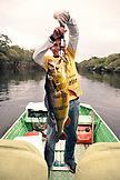 BRAZIL, Agua Boa, fishing guide weighing a Peacock Bass, Agua Boa River and resort