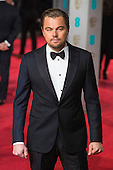 London, UK. 14 February 2016. Actor Leonardo DiCaprio. Red carpet arrivals for the 69th EE British Academy Film Awards, BAFTAs, at the Royal Opera House. © Vibrant Pictures/Alamy Live News