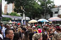 SÃO PAULO-SP-15.02.2014-CARNAVAL DE RUA/VILA MADALENA-Foliões em concentração para o Carnaval de Rua na  Purpurina com Fradique Coutinho em Vila Madalena.Região oeste da cidade de São Paulo na tarde desse domingo de carnaval,15.(Foto:Kevin David/Brazil Photo Press)