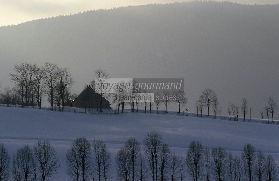 Europe/France/Rhône-Alpes/38/Isère/Env de Villard-de-Lans: Ferme dans les montagnes