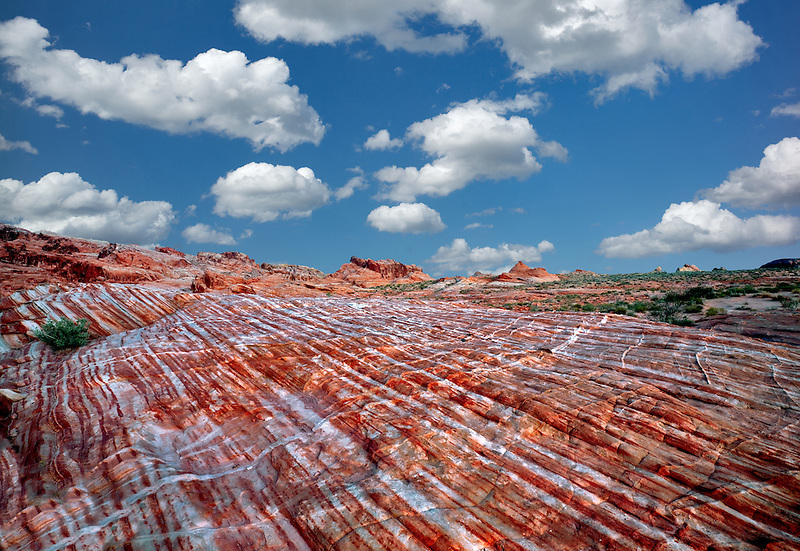 Bands of striated, colorful rocks. Valley of Fire State Park, Nevada