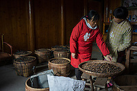 Villagers check camellia oil tea seeds in Mingshui Village in Poyang county at Poyang Lake, Jiangxi Province, December 2014. Poyang Lake, located in the north of Jiangxi Province, is the largest freshwater lake in China. It fluctuates dramatically between wet and dry seasons, from 3,500 square kilometres down to about 200 square kilometres. The lake provides a habitat for half a million migratory birds.