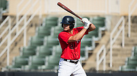 Aaron Schnurbusch (21) of the Kannapolis Intimidators at bat against the Delmarva Shorebirds at Kannapolis Intimidators Stadium on July 2, 2017 in Kannapolis, North Carolina.  The Shorebirds defeated the Intimidators 5-4.  (Brian Westerholt/Four Seam Images)