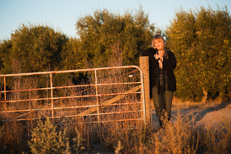 Olive Oil Orchards with Lisa Rowntree