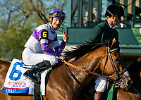 LEXINGTON, KENTUCKY - APRIL 08: Irap #6, ridden by Julien Leparoux, wins the Blue Grass Stakes and picks up 100 Kentucky Derby points on Bluegrass Stakes Day at Keeneland Race Course on April 8, 2017 in Lexington, Kentucky. (Photo by Scott Serio/Eclipse Sportswire/Getty Images)