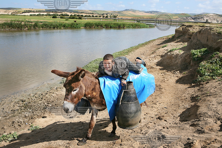 Boy uses his donkey to fetch water from the river Sebou. The water is too polluted to be used for drinking water, as sewage from villages and towns is washed upriver, but it is used by villagers for irrigation, cleaning and livestock...