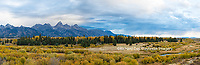 67545-08913 Fall color from Blacktail Ponds Overlook, Grand Teton National Park, WY