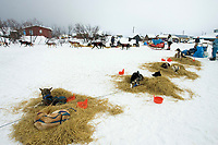 Ramy Brooks Mushes Out of Kaltag Chkpt Past Resting Teams 2005 Iditarod