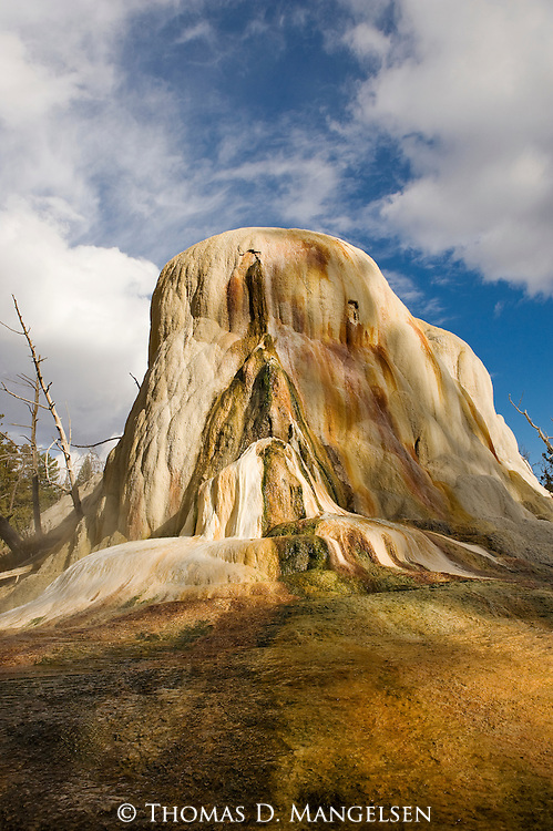 Orange Spring Mound at Mammoth Hot Springs in Yellowstone National Park, Wyoming.