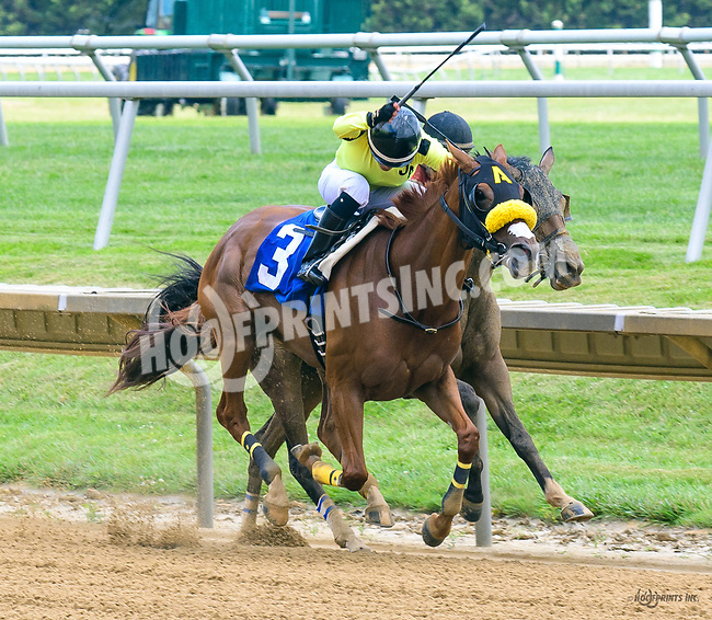 Our Princess Belle winning at Delaware Park on 7/1/17