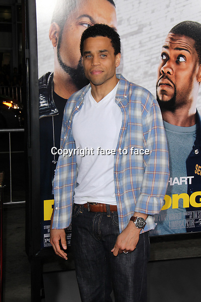 HOLLYWOOD, CA - January 13: Michael Ealy at the &quot;Ride Along&quot; World Premiere, TCL Chinese Theater, Hollywood, January 13, 2014. <br />