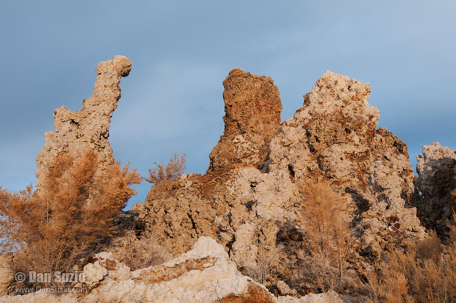Tufa towers at the South Tufa Area, Mono Lake Tufa State Natural Reserve, Mono Lake, California. Tufa is formed when springs under the lake mix calcium-rich freshwater with alkaline lakewater, precipitating deposits of calcium carbonate. The lake level has dropped more than 30 feet since 1941, when the city of Los Angeles began diverting water from the streams that feed it, exposing the formerly submerged tufa.