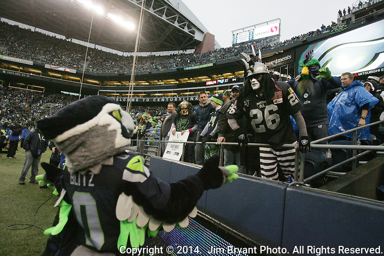 Seattle Seahawks  mascot, Blitz is harassed by an Oakland Raiders fan at CenturyLink Field in Seattle, Washington on November 2, 2014.    The Seahawks beat the Raiders 30-24 in Seattle. ©2014.  Jim Bryant Photo. All rights Reserved.