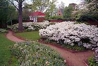UVa Gardensuva garden flower spring