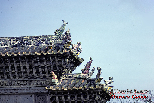 Decorated Roof