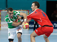 Algeria's Omar Benali (l) and Egypt's Omar Elsweidy during 23rd Men's Handball World Championship preliminary round match.January 15,2013. (ALTERPHOTOS/Acero) /NortePhoto