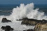 Wave at Pescadero State Beach