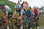 Roman Kreuziger (CZE) Dimension Data, Romain Bardet (FRA) AG2R La Mondiale, Nairo Quintana (COL) Movistar Team and	 Rigoberto Uran (COl) EF Education First all lose time on the approach to the finish on Prat d'Albis during Stage 15 of the 2019 Tour de France running 185km from Limoux to Foix Prat d'Albis, France. 20th July 2019.<br /> Picture: Colin Flockton | Cyclefile<br /> All photos usage must carry mandatory copyright credit (© Cyclefile | Colin Flockton)