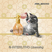 Marcello, REALISTIC ANIMALS, REALISTISCHE TIERE, ANIMALES REALISTICOS, paintings+++++,ITMCEDC1043,#A#, EVERYDAY ,cat,cats