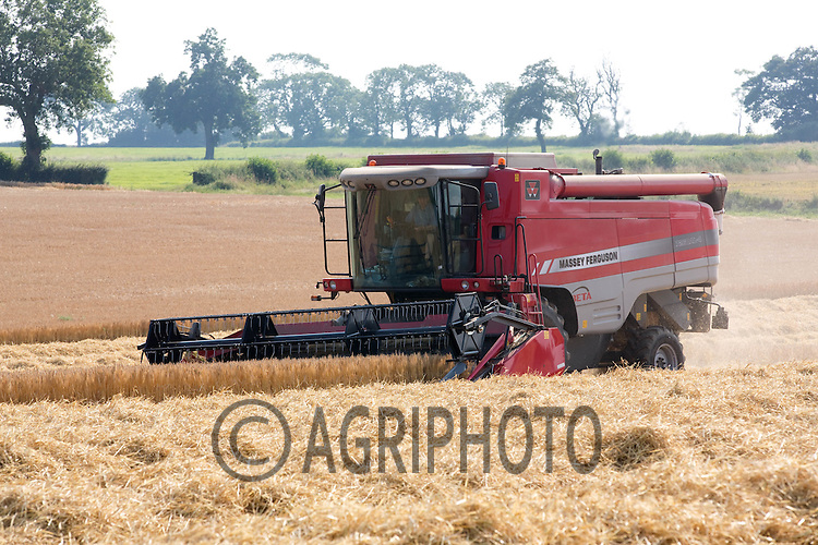 Harvesting Winter Barley in Rutland