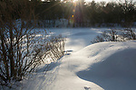 Late afternoon winter sun at Breakheart Reservation, Saugus, MA