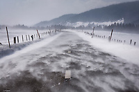 Wind blowing snow on a road
