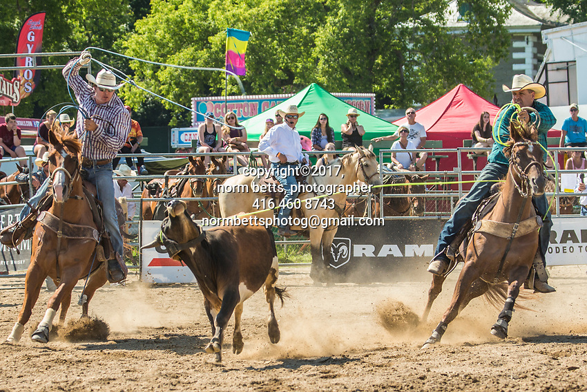 Beachburg, Ontario, Canada --- 29July'17<br /> The RAM Rodeo at the 160th year of the Beachburg, Ontario, Canada<br /> <br /> <br /> photos by Norm Betts<br /> normbetts@canadianphotographer.com<br /> &copy;2017, Norm Betts, photographer<br /> 416 460 8743