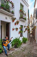 Spanien, Andalusien, Córdoba: Callejón de las Flores, Altstadtgasse, Gittarenspieler, Blick auf Torre del Alminar | Spain, Andalusia, Córdoba: Callejón de las Flores, old town lane, guitarist, tower Torre del Alminar