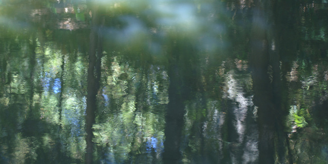 A Monet-like photograph of the reflections of sky and trees in a pond in Brevard, North Carolina. Best printed on water-color paper. Awarded 2nd Place, Fall 2009, Selected for Photographic Center - Capital District - Best of 2010 Members' Show.