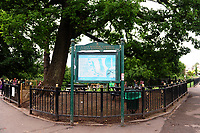 Pictured: Monday 13th August 2018. A general view of Roath park.<br /> Re: A rare Chinese tree in Cardiff has flowered for the first time since it was planted more than 100 years ago.<br /> The creamy-white flowers on Roath Park's Emmenopterys henryi are thought to be the result of a cold winter followed by heatwave conditions.