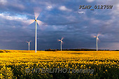Marek, LANDSCAPES, LANDSCHAFTEN, PAISAJES, photos+++++,PLMP01270W,#L#, EVERYDAY