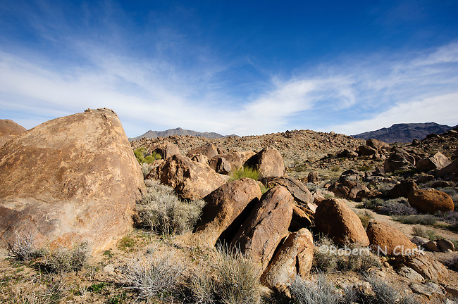 Typical Chukar habitat in the Mojave Desert