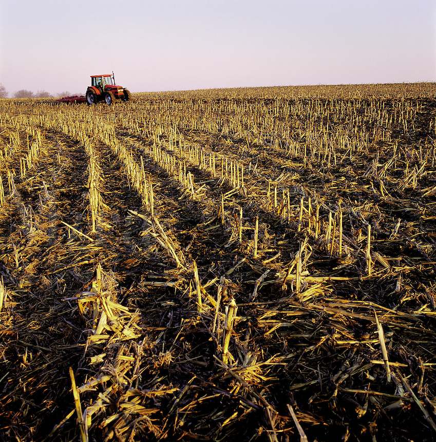 A distant tractor plows a field of corn stubble.