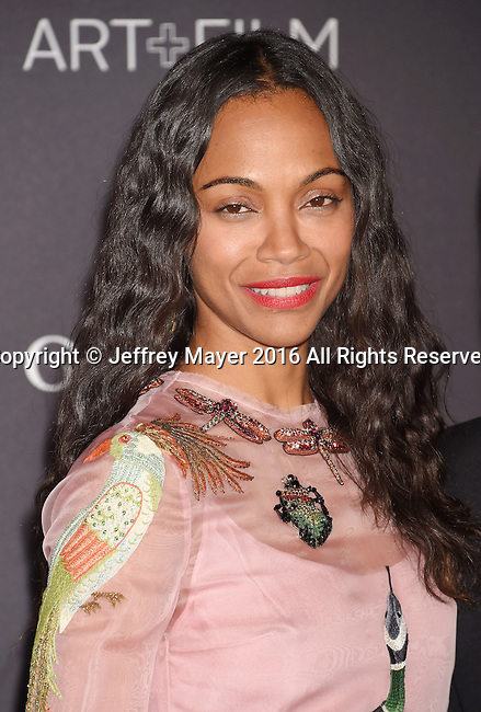 LOS ANGELES, CA - OCTOBER 29: Actress Zoe Saldana attends the 2016 LACMA Art + Film Gala honoring Robert Irwin and Kathryn Bigelow presented by Gucci at LACMA on October 29, 2016 in Los Angeles, California.