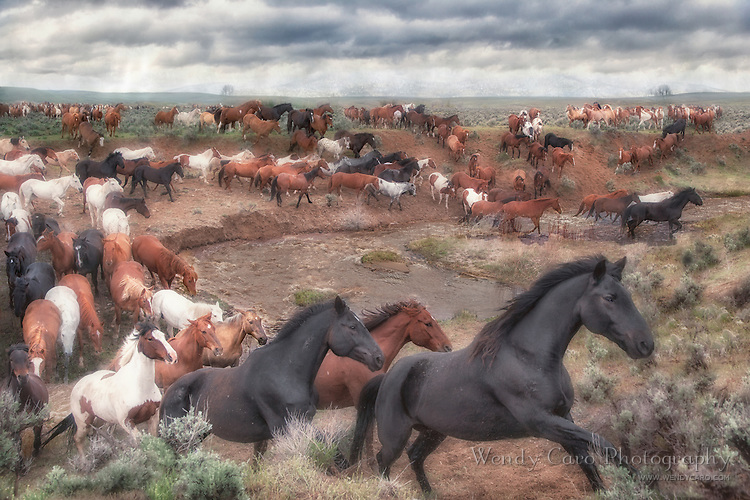 Herd of horses galloping across a high plateau, racing against an impending mountain storm