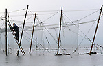 One of a team of salmon netters battle against the incoming tide as they secure poles with ropes on the foreshore during construction of the fly net on the rocks at Boddin, Angus. This type of net was discontinued in 2001. The once-thriving Scottish salmon netting industry fell into decline in the 1970s and 1980s when the numbers of fish caught reduced due to environmental and economic reasons. By 2007, only a handful of men still caught wild salmon and sea trout using traditional methods, mainly for export to the Continent.