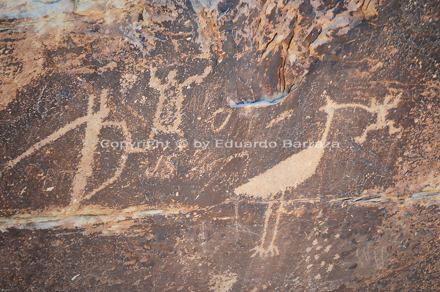 Navajo County, Arizona – These petroglyphs at the Puerco Pueblo are interpreted by modern-day Zuni tribe members as representing a mother of the Crane Clan a father from the Frog Clan. It also recalls a story of a large bird that came to villages to eat bad children. The Painted Desert is a broad region of rocky badlands featuring unique rocks in a variety of hues - lavenders, grays, reds, oranges and pinks. Located in Northeastern Arizona, the Painted Desert attracts hundreds of thousands a visitors each year. Photo by Eduardo Barraza © 2014