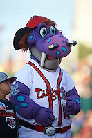 Lansing Lugnuts mascot Big Lug during a game against the Peoria Chiefs on June 6, 2015 at Cooley Law School Stadium in Lansing, Michigan.  Lansing defeated Peoria 6-2.  (Mike Janes/Four Seam Images)