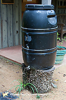 65821-001.03  Rain Barrel in garden, Chapel Hill  NC
