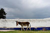 Hacienda Xochuca, Pulque route, Tlaxcala, Mexico June 5, 2007