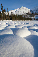 Snow covered tussocks in the tundra landscape north of coldfoot, Alaska in the Brooks Range.