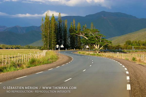 Route de la côte Ouest (RT1) région de Népoui, province Nord, Nouvelle-Calédonie