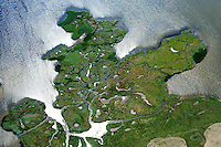 Salzwiesen Insel Poel Breitling : EUROPA, DEUTSCHLAND, MECKLENBURG- VORPOMMERN 29.06.2013 Salzwiesen im oestlichen Bereich der Insel Poel. Salzgruenlandflaechen mit Schwemmlandinseln und Schwemmlandufern, die von Prielen durchsetzt sind pure Natur.