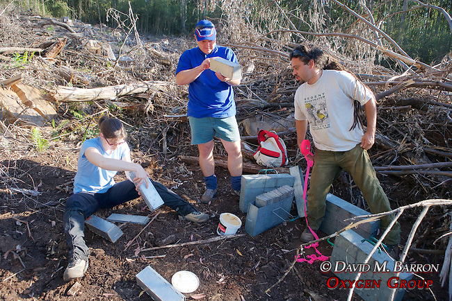 Sarah, Kevin & Damian Putting Traps Together