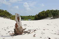 Horn Island, Mississippi - Gulf Islands National Seashore