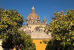 Dome of Cathedral church amidst orange trees with deep blue sky, Jerez de la Frontera, Cadiz province, Spain